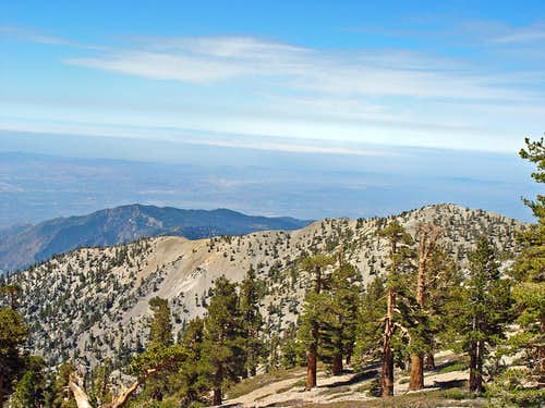 View west from Mount Baldy