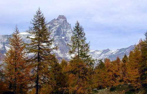 Il monte Cervino - Matterhorn