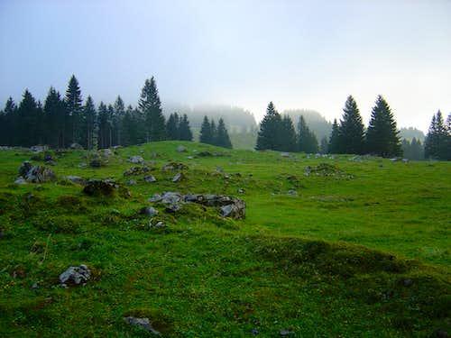 Landscape by the Säntis 2502m