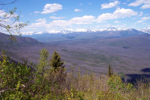 Views from Apgar