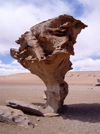 Arbol de Piedra - Stonetree