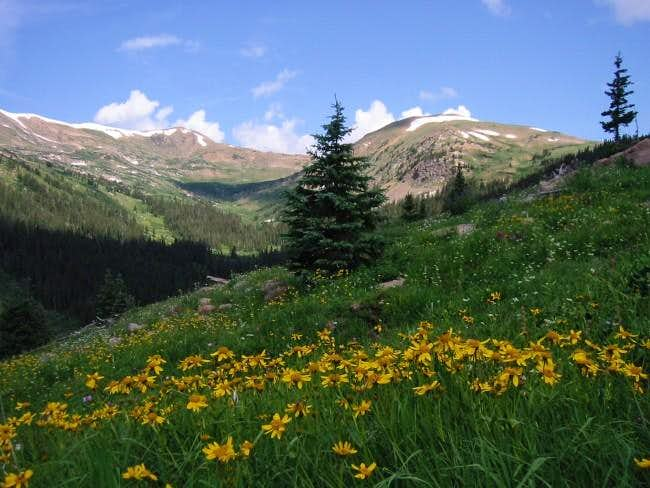 The view up the West Fork of...