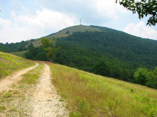 Little Pisgah Mountain (Henderson County)