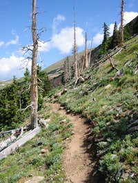 The Continental Divide Trail...