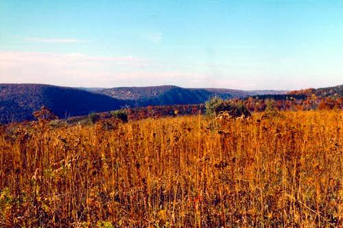 Gleason Meadows/Frenchman's Bluff