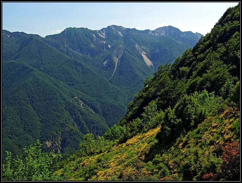 Monte Chiampon from the N