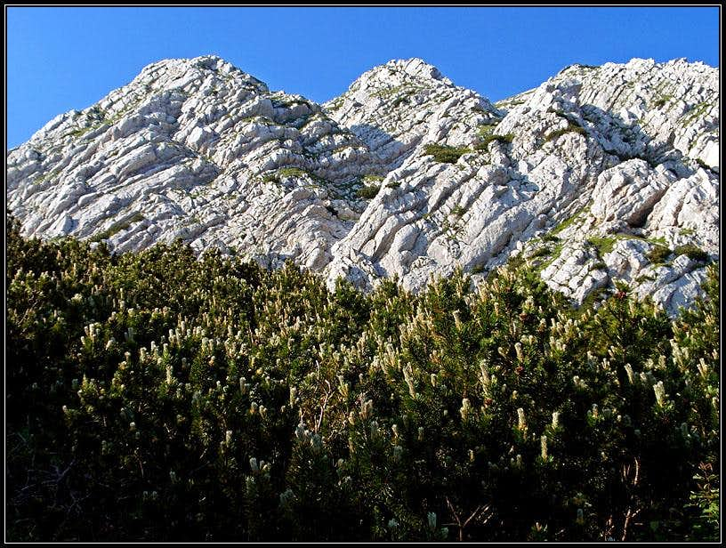 Monte Lavara / Golz / Javor S face