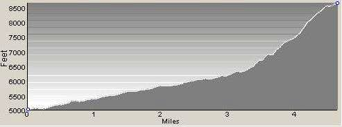 Profile of Ronmey Ridge Route