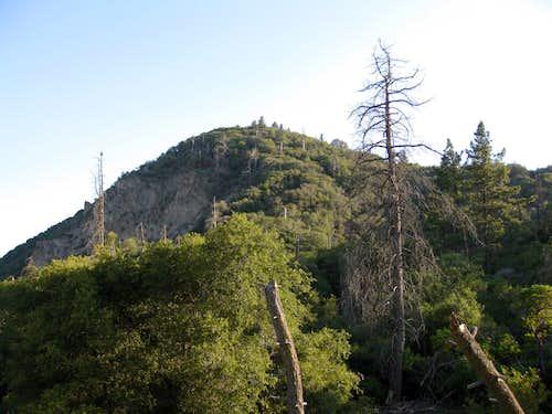 Allen Peak (5795') on Yucaipa Ridge