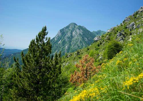 Monte Postoucicco