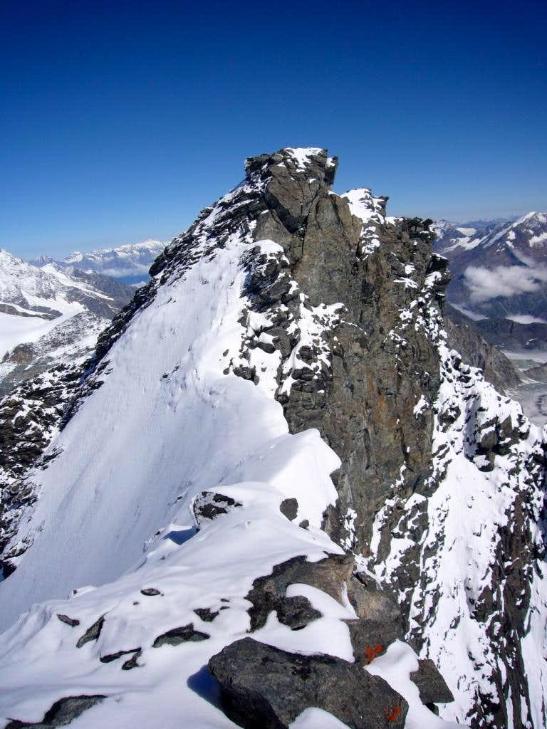 Summit ridge of Rimpfischhorn