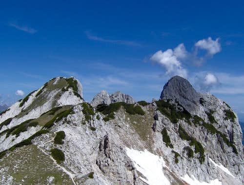 Steiner Alps