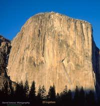 LF 3500 x 3700 west face El Capitan