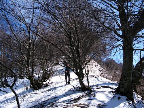 Ascent to Monte Generoso 1701m
