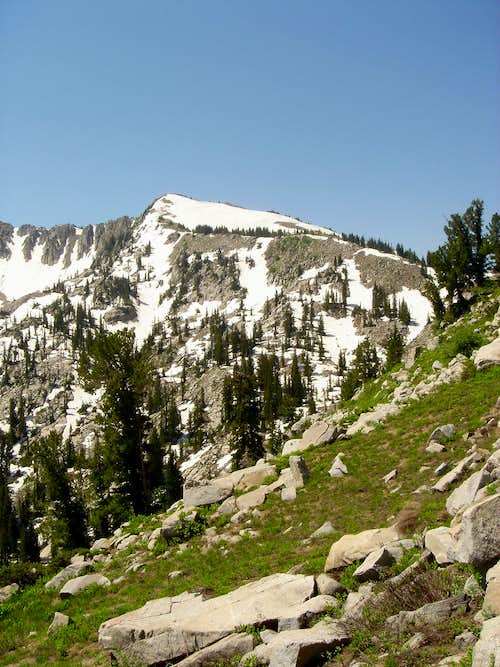 Patsey Marley from the trail to Twin Lakes Pass