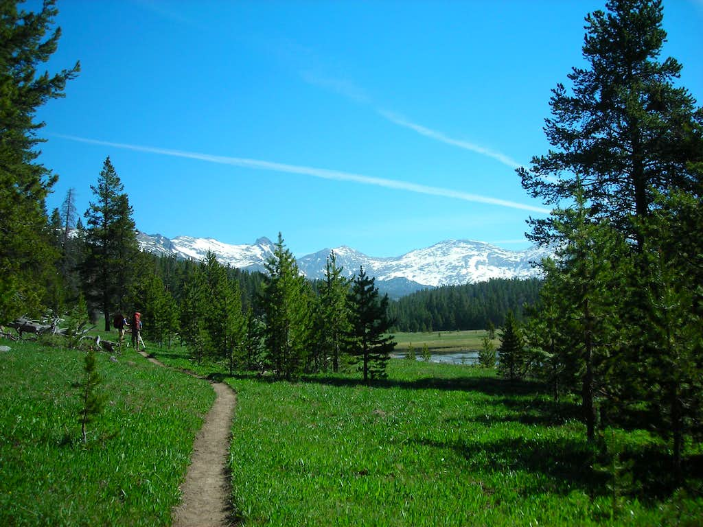 Meadow near trailhead