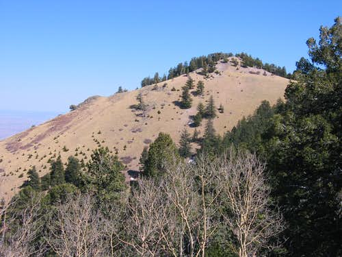 Unnamed Peak in the Magdalenas