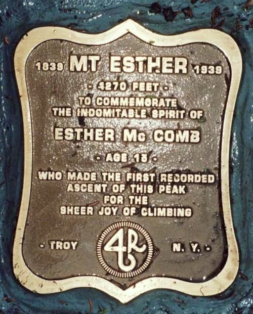 Plaque on Esther. 11/03/2003