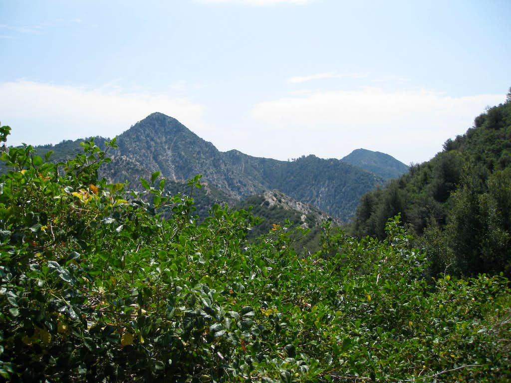 Strawberry Peak (6164')