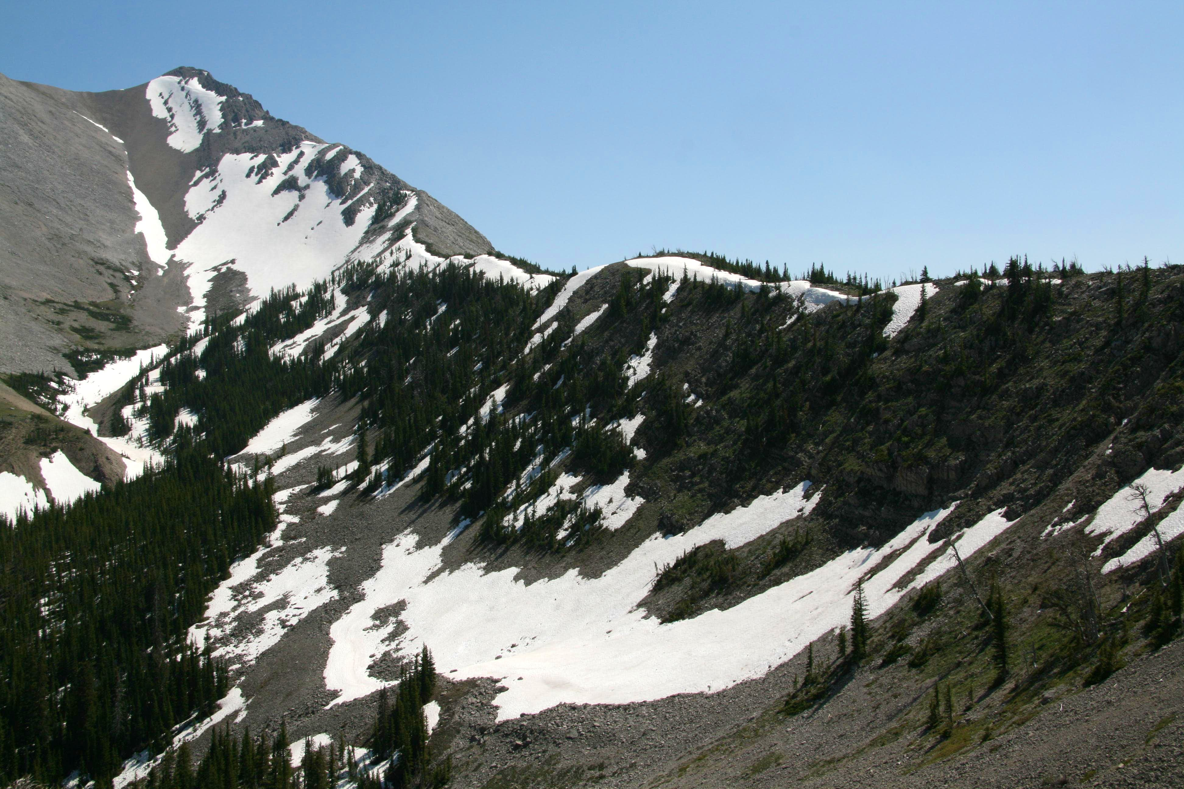 North Ridge from Route Creek Pass