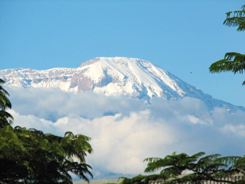 Beautiful view of Kili