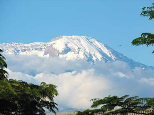 Beautiful view of Kili