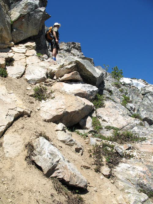 Scrambling Section