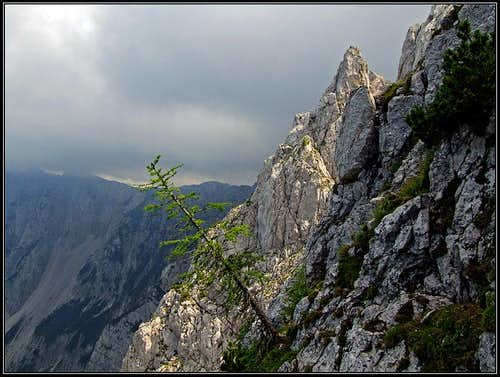 In the N rib of Kosutica / Loibler Baba