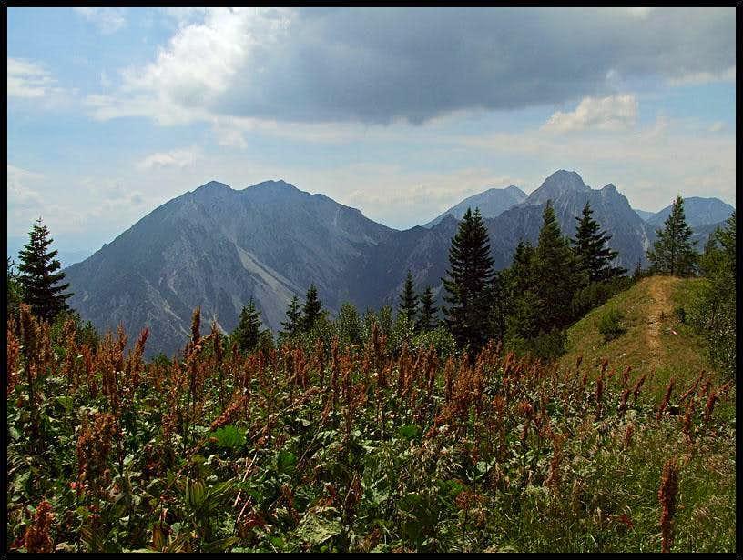 On Kosutica / Loibler Baba W ridge