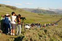 Wolf Watchers in Lamar Valley