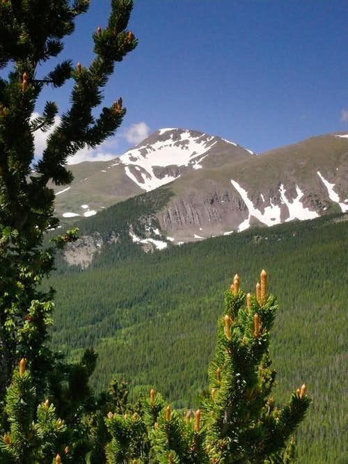 calendar image? Trinchera Peak, early July