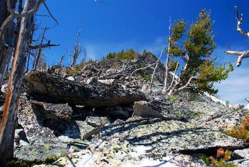 Camas Point East Ridge