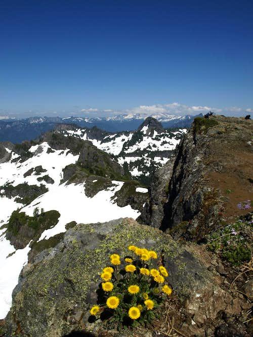 Mount Dickerman Summit