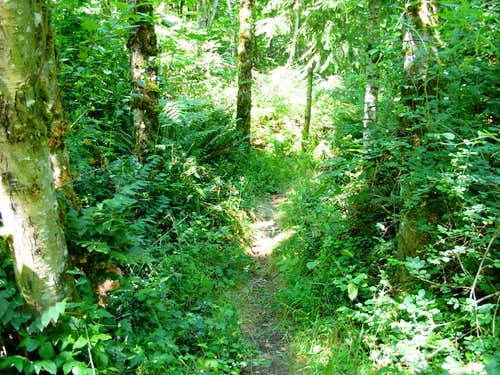Hiking Trail in Lord Hill Regional Park
