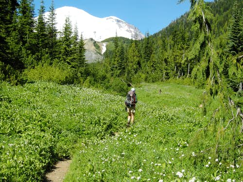 Meadows on way to Summerland