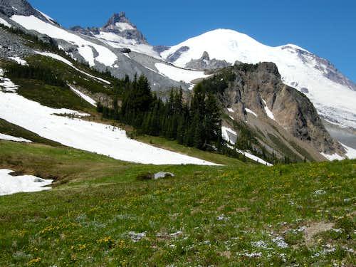 Mt. Rainier and Little Tahoma