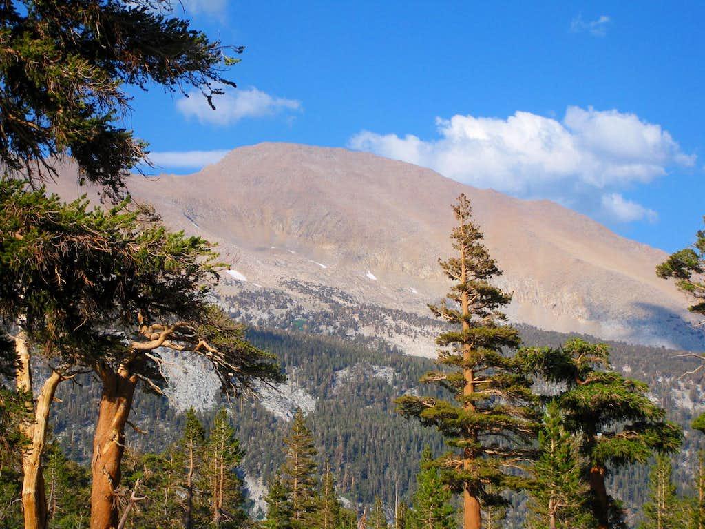 Mount (aka Big) Kaweah (13,804')