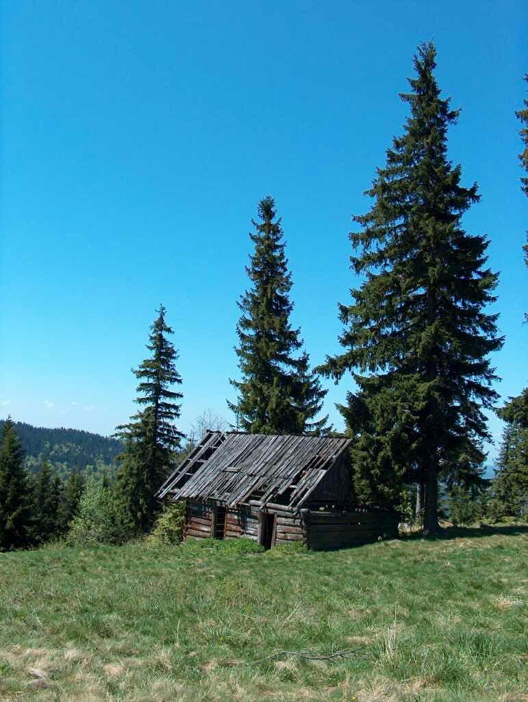 Small abandonned pasture hut, Gorce.