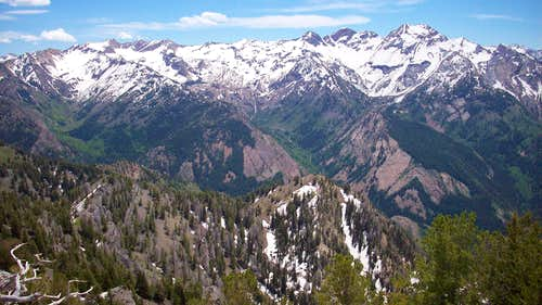 A view of Cottonwood Ridge from Wildcat