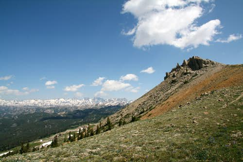 Tundra Ridges