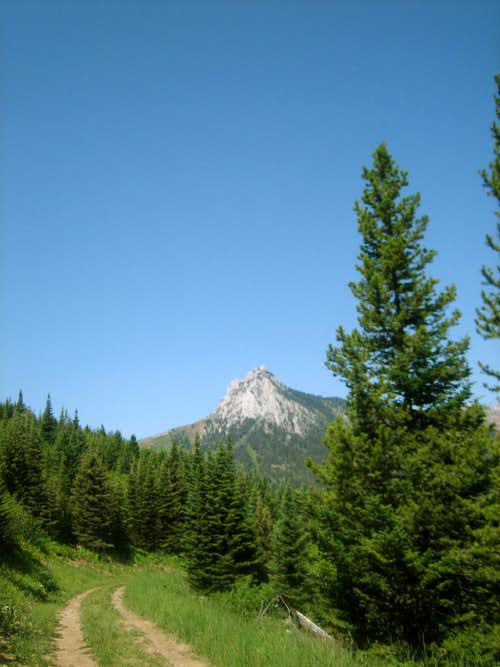 Ross Peak from the Brackett Creek Road