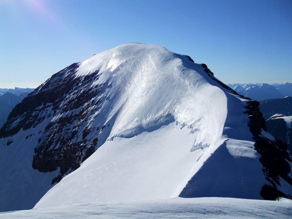 Athabasca summit ridge