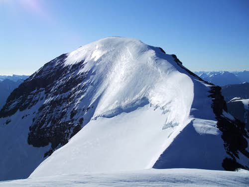 Athabasca summit ridge