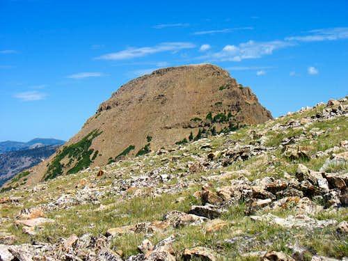 Reids Peak from Bald Mountain Southwestern Slopes