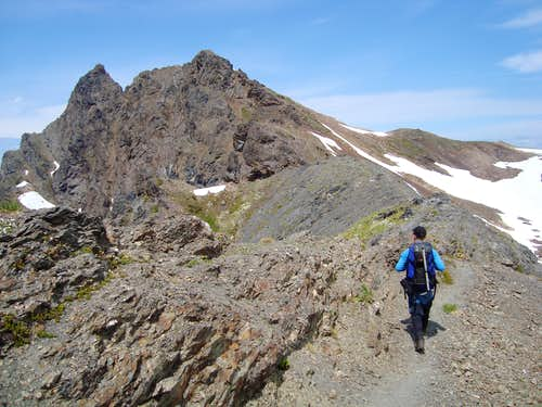 Ridge leading to Tomyhoi Peak