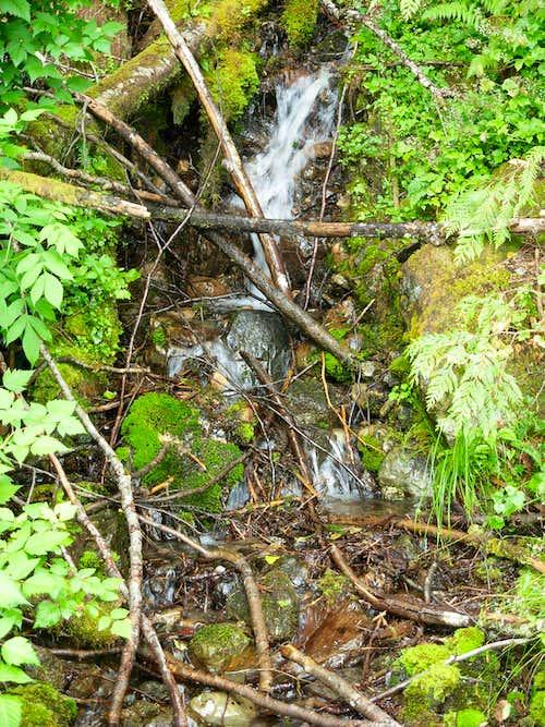 Small Stream...