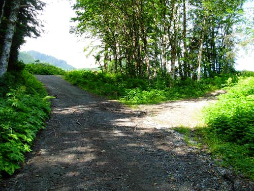 The Road Splits Towards Haystack Mountain...
