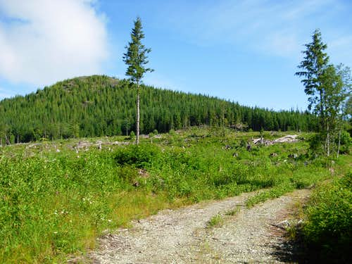 Looking At Haystack Mountain...