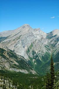 Three Sisters from Mount Fernie