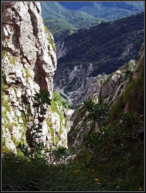 Beli potok ravine